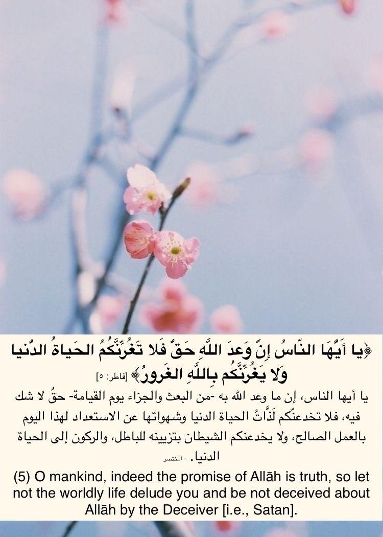 ف لا ت غ ر ن ك م الح ياة الد نيا و لا ي غ ر ن ك م ب الل ه الغ رور Allah Let It Be Islam
