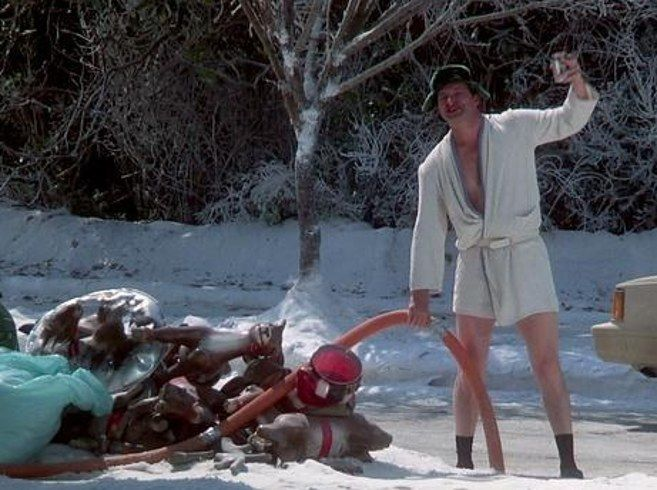 Had Randy Quaid moment. Dog had to go, went out in bathrobe/boots ...