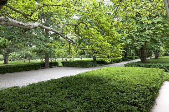 Miller House garden by Dan Kiley.