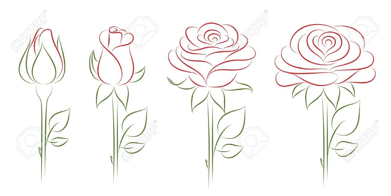 How To Draw A Blooming Flower Wwwgalleryhipcom The