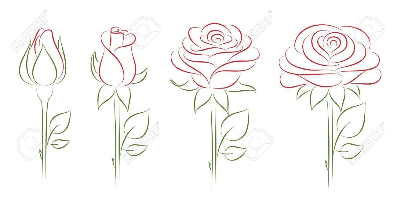 Drawings Of Flower Bloomin