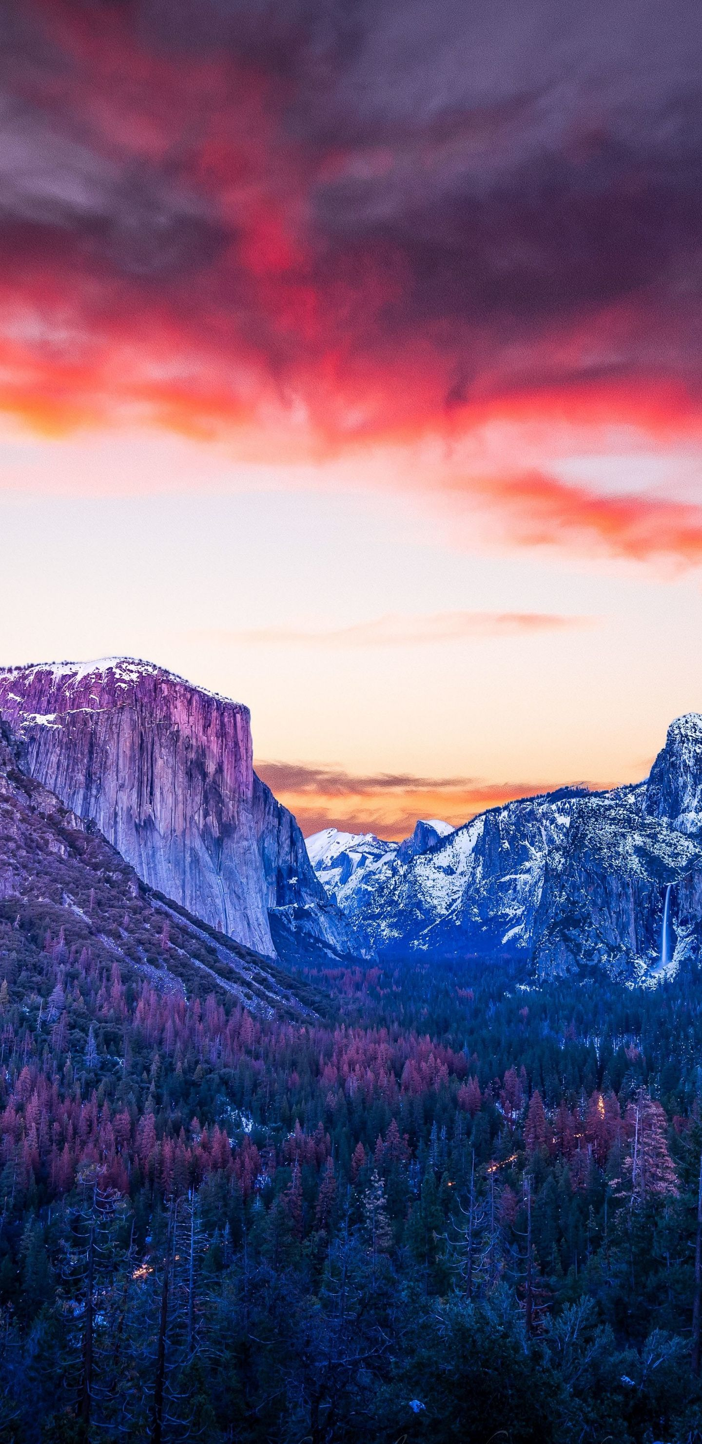Mountains, forest, twilight, Yosemite Valley Wallpaper