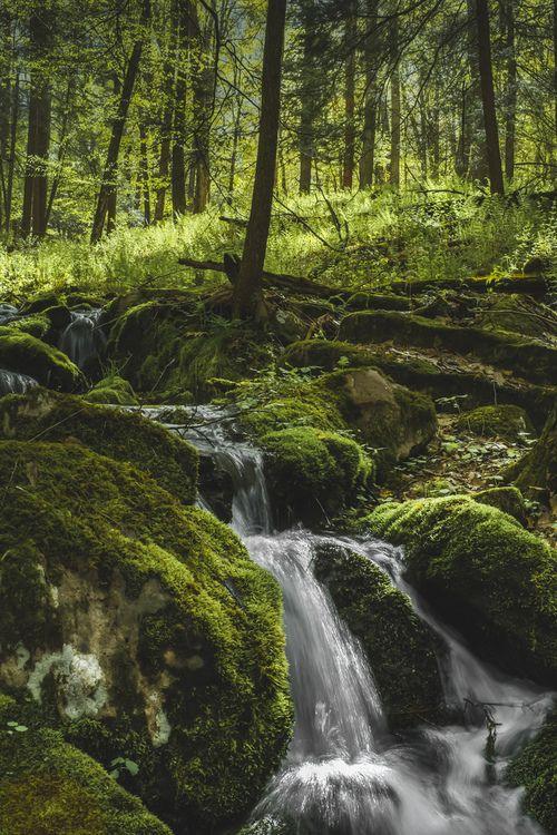 just-breezy: Rothrock Falling . Pennsylvania. Colin Gallagher