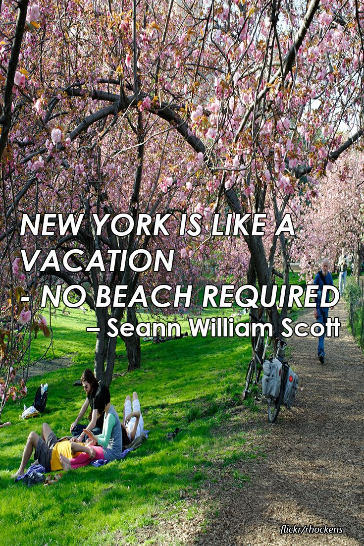 New York is like a vacation -no beach required - Seann William Scott #NYC #quotes #love