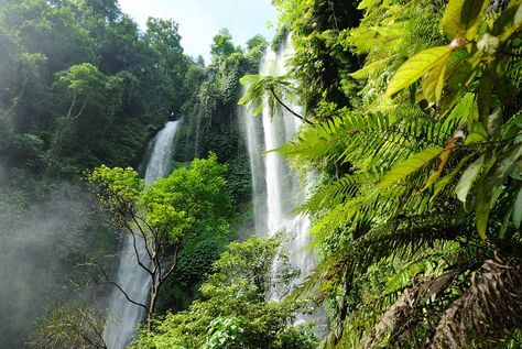 , Geheimtipp Bali: Der Wasserfall Sekumpul › Indojunkie, Travel Couple, Travel Couple