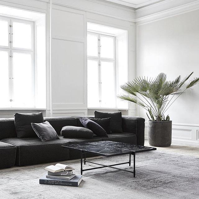 Dunkle Couch Und Grosse Blume Daneben