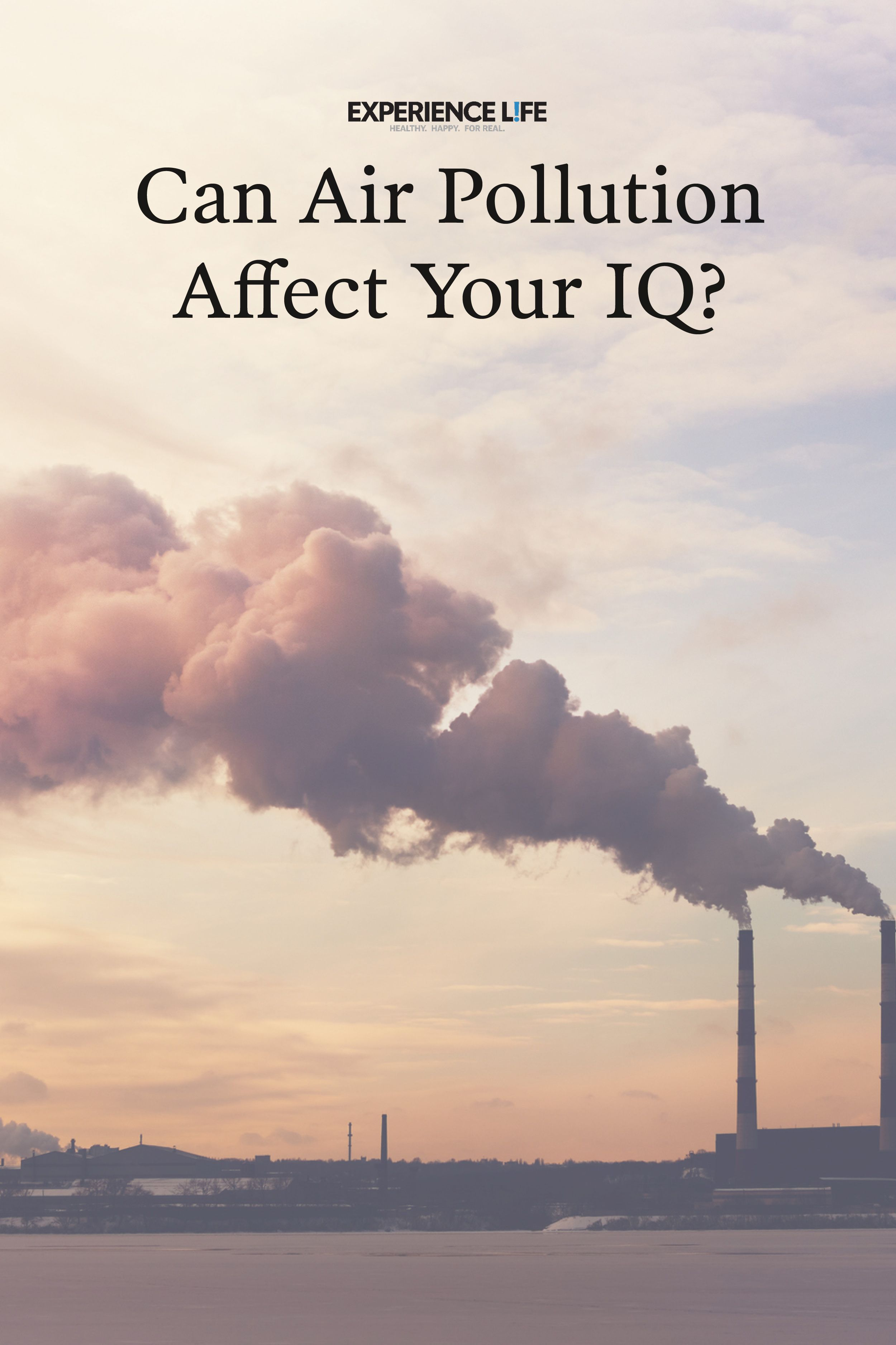 Can Air Pollution Affect Your IQ? Air pollution, Indoor