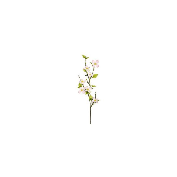 37 dogwood branch in soft pink dogwood branch silk flowers 37 dogwood branch in soft pink dogwood branch silk flowers liked on polyvore featuring home home decor floral decor flowers backgrounds nature mightylinksfo