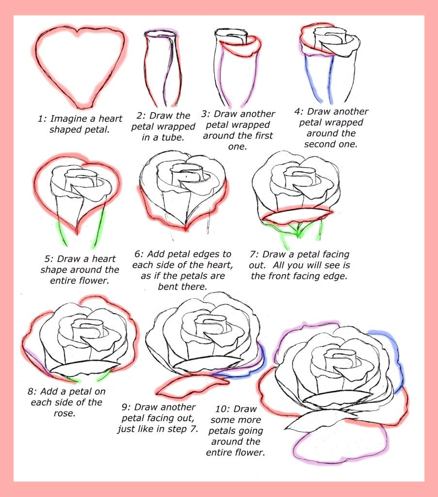 How to draw roses step by step tutorial on how to draw for How to step by step draw a rose