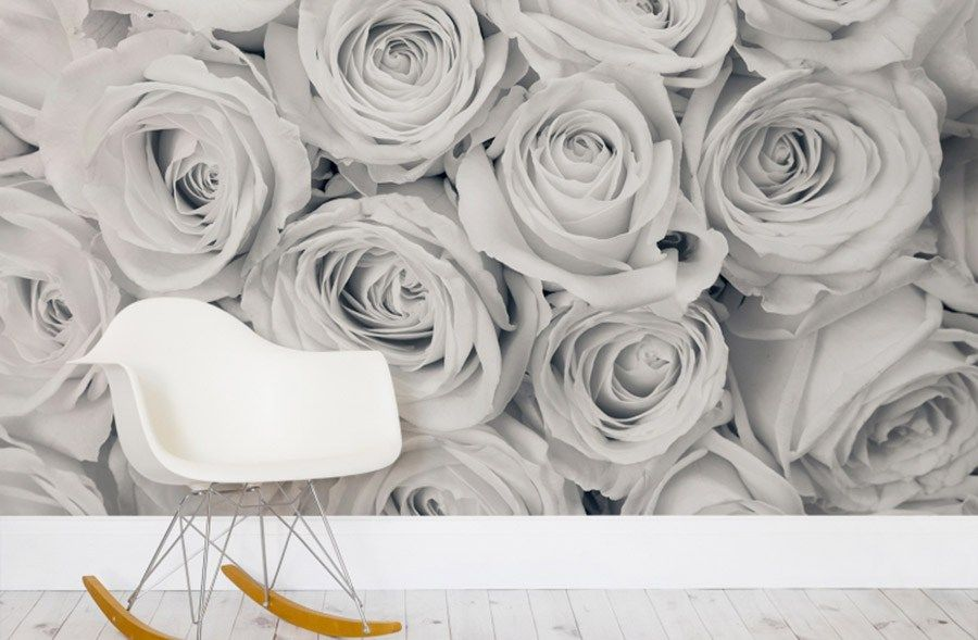 Floral One Rose White Creame Flower Wall Mural Photo Wallpaper GIANT WALL DECOR