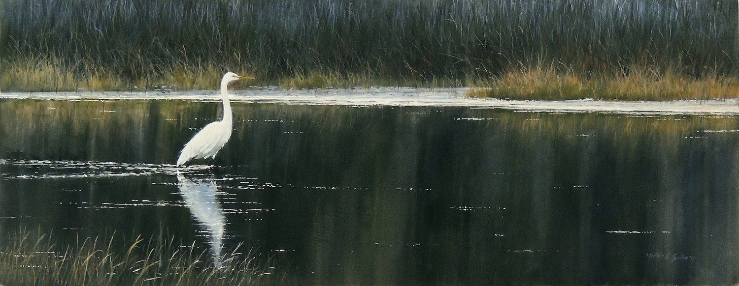 """Great Egret"" (With images) Watercolor landscape"