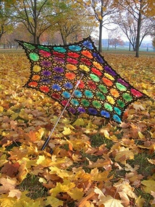 Colors with fall leaves