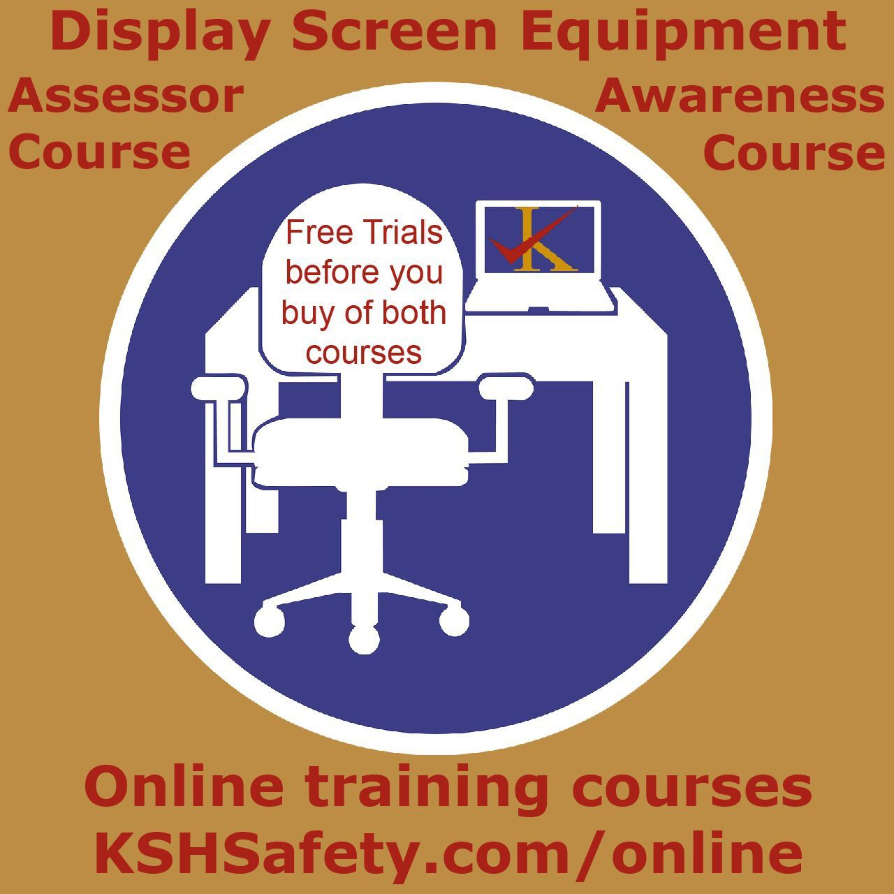 Display Screen Equipment Health and safety, Display