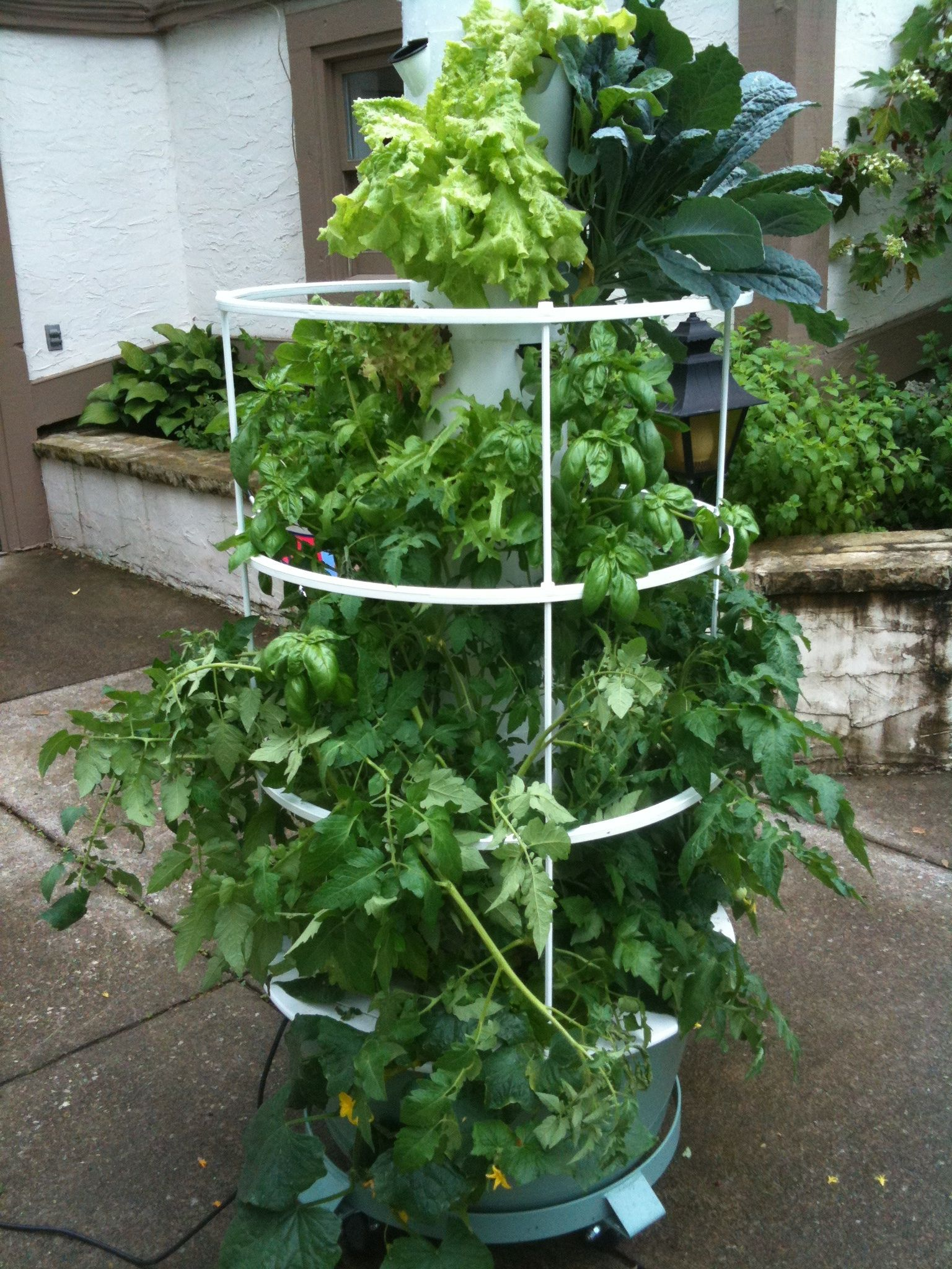 Caging In The Harvest Juice Plus Tower Garden Tower Garden