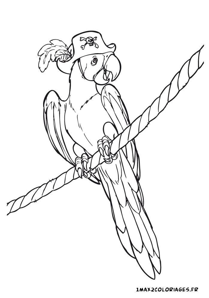Coloriage de pirates anniversaire pinterest coloriage de pirate et coloriage - Perroquet en dessin ...