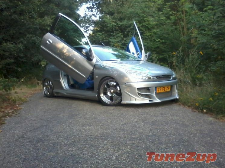 For Sale Modified Peugeot 206 Showcar Car Tuning Peugeot Sell Car