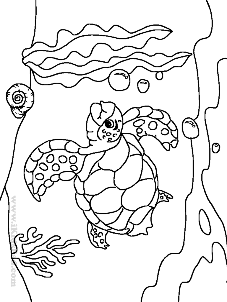 https://www.google.com/search?q=butterfly coloring pages | Clip Art ...