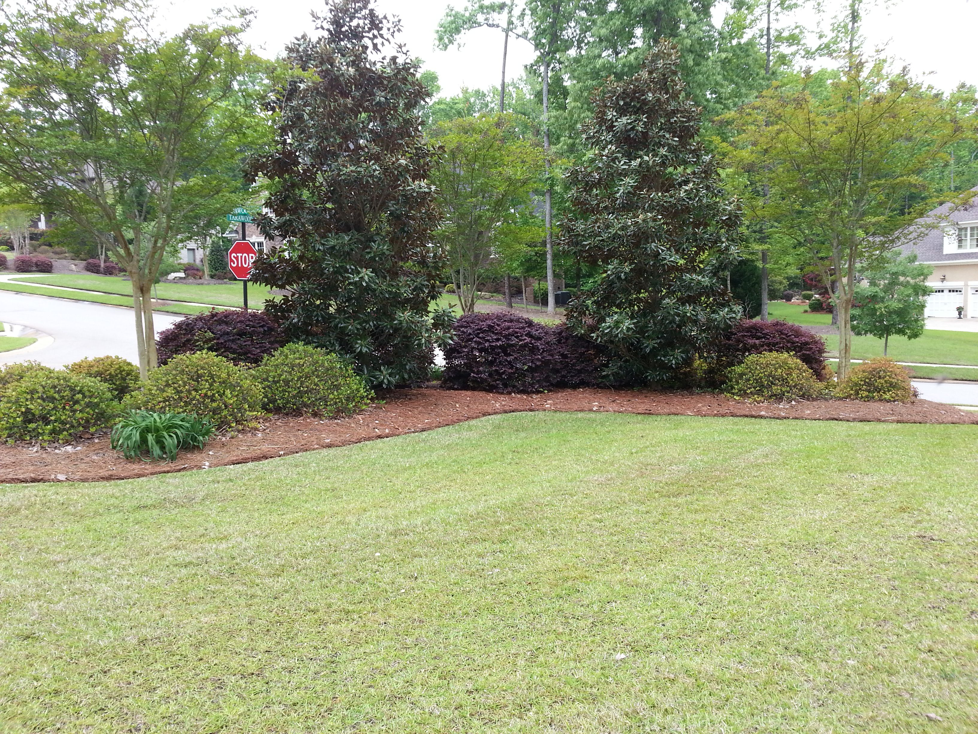 Great Landscaping Idea For A Corner Corner Landscaping Landscaping With Rocks Privacy Landscaping