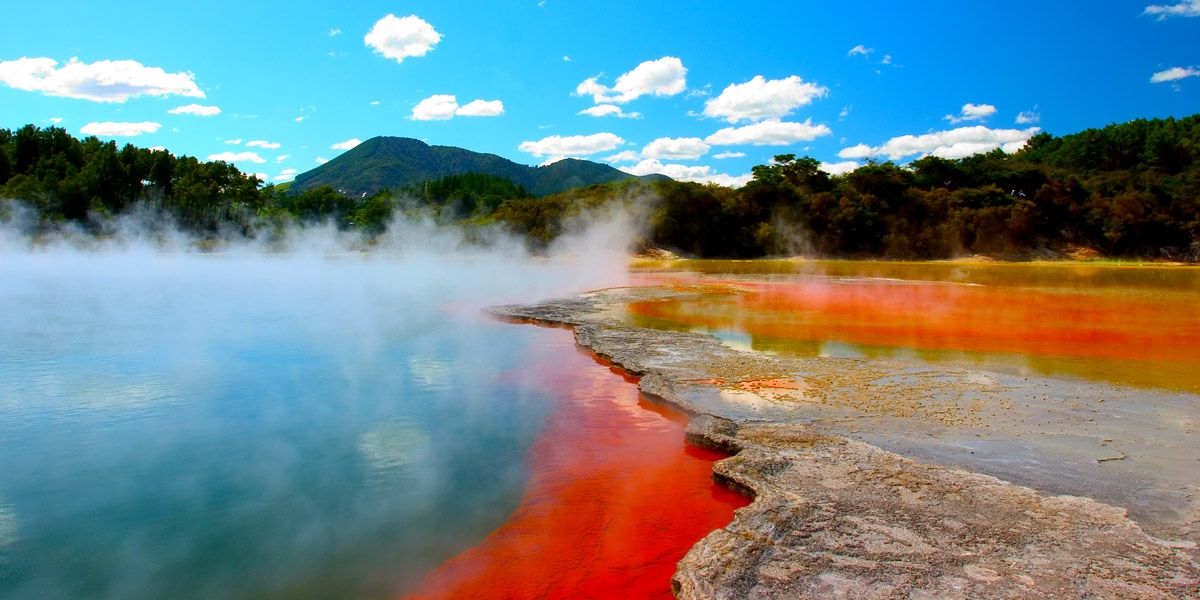 Hot passion new zealand