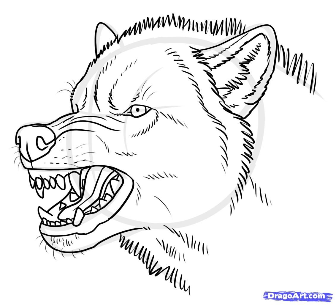How To Draw An Angry Wolf By Makangeni Pencil Drawings Of