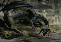 http://vignette1.wikia.nocookie.net/forgottenrealms/images/c/cd/4e_black_dragon.jpg/revision/latest?cb=20081013212948