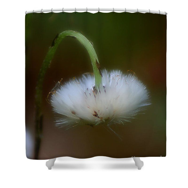 A simple white, fluffy flower shower curtain. Photography by Susan ...