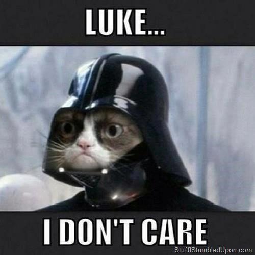 Star Wars Meme Grumpy Cat Meme Lol Lulz Geek Darth Vadar Vader Grumpy Cat Meme Grumpy Cat Humor Grumpy Cat