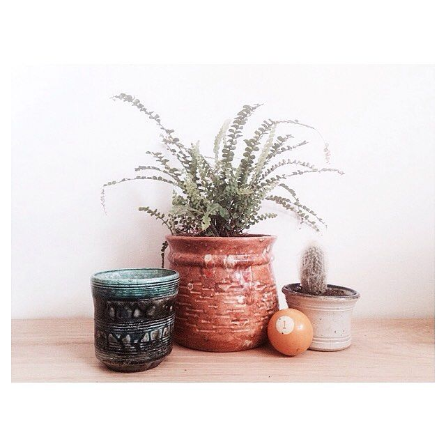 Micro vignettes are fun to play with. Kind of like creating a personal alter. Colorful vintage pots here, (selling sans plants) left to right: 18/26/12. Old #1 pool ball $15. PS -- we have new plants coming to the shop this week! And more pretty vintage pots at the shop for potting 'em all up