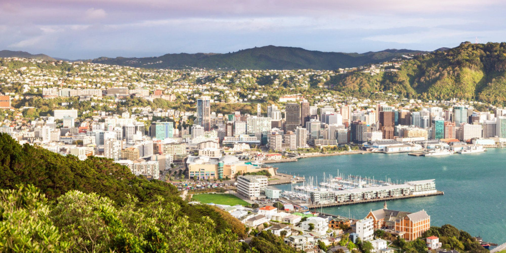Woah New Zealand Will Pay For You To Visit And Interview