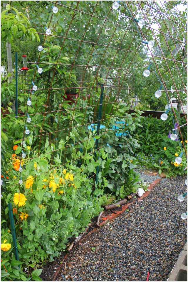 Lovely Grow And Resist Using Concrete Wire Mesh In The Garden Trellis Vertical  Gardening