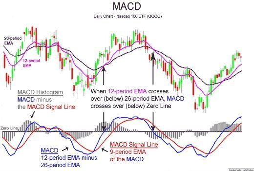 Trading Infographic Macd Indicator Moving Average