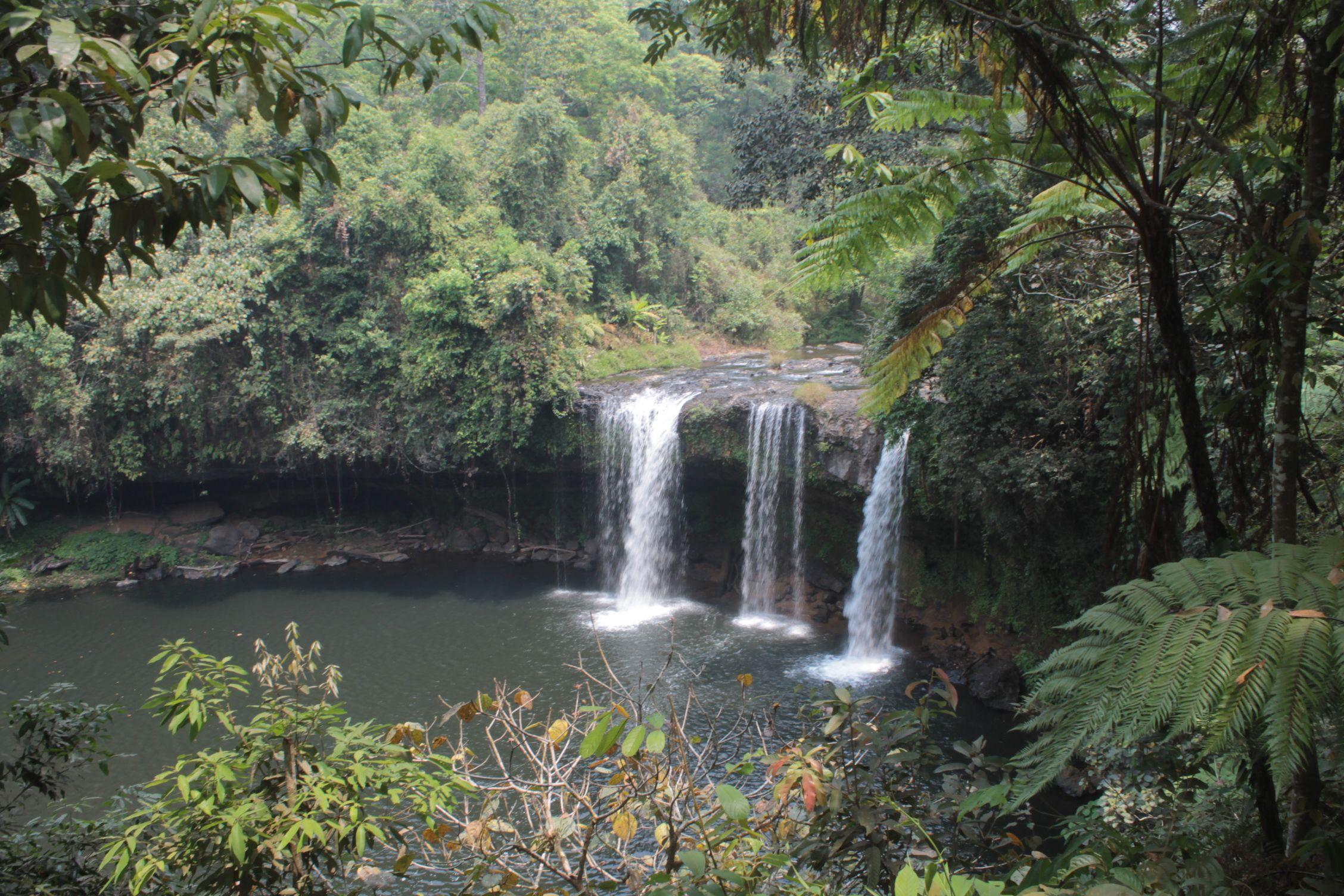 La primera cascada del recorrido, Tad Champi