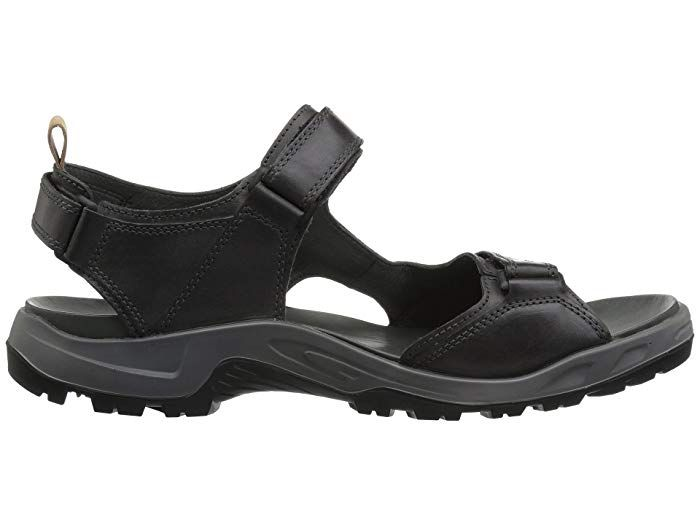 zappos ecco sandals