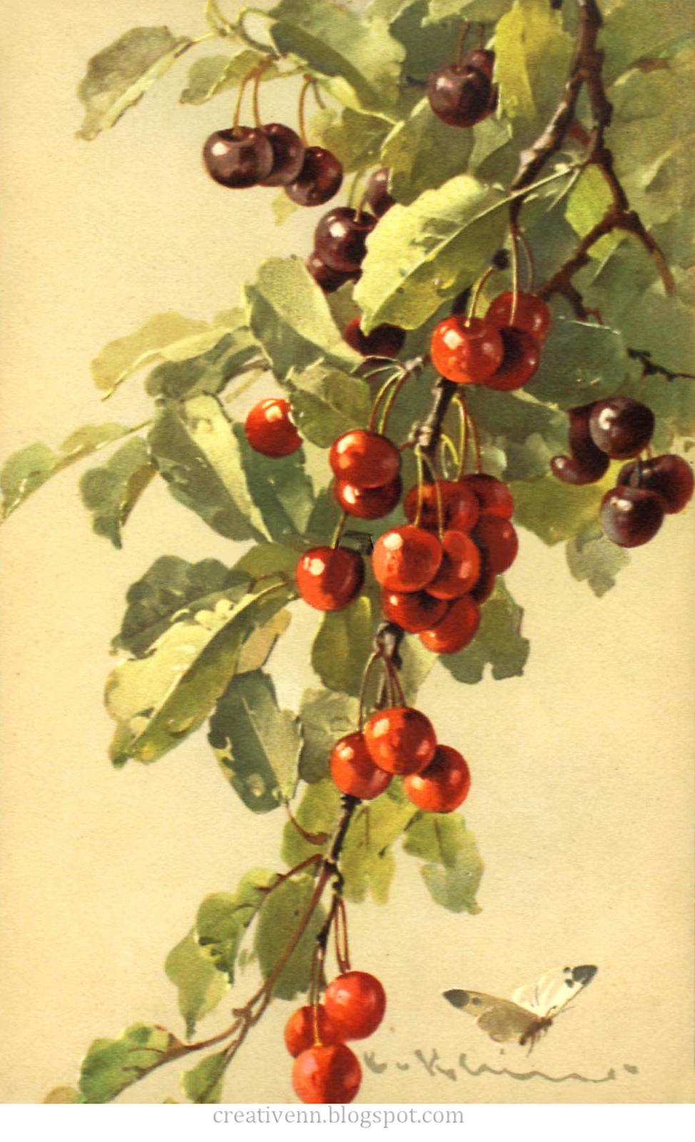 Frukt. For arbeider i stil med Vintage. Catherine Klein:. ♥ Creative NN. Albina Rasseinoy blogg. ♥