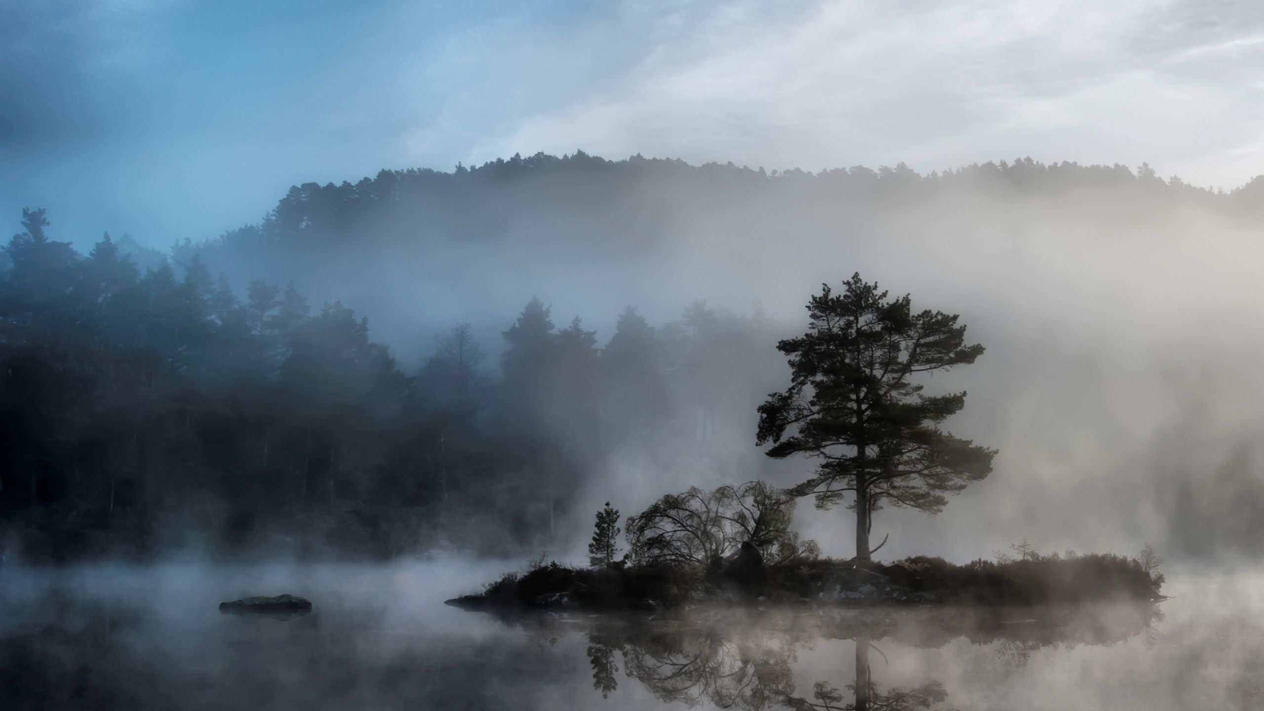 Tree Island Reservoir Fog Mysterious X Hd Wallpaper Fog Photography Landscape Scenery Picture Hd wallpaper morning lake trees fog