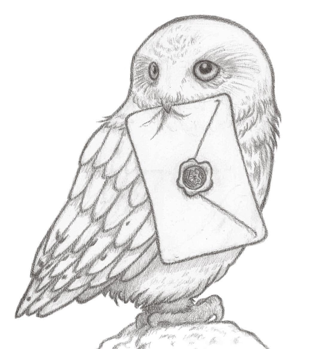pin von theresa riess auf harry potter | zeichnungen, harry-potter