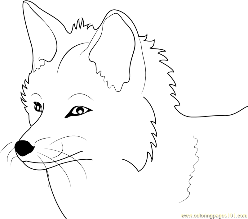 Red Fox Coloring Pages Printable of Fox Coloring Pages 18839