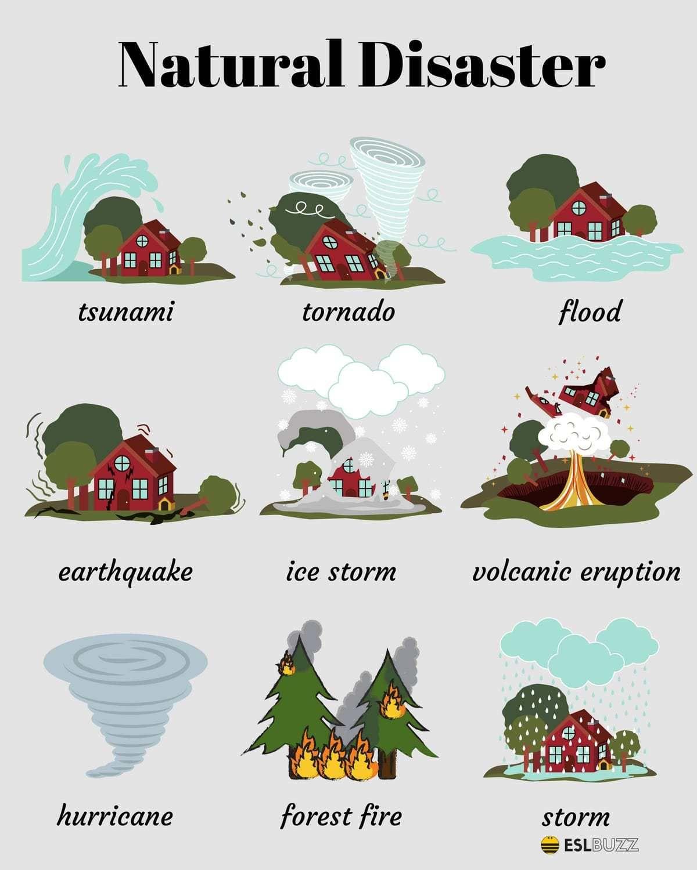 English Vocabulary The Natural World