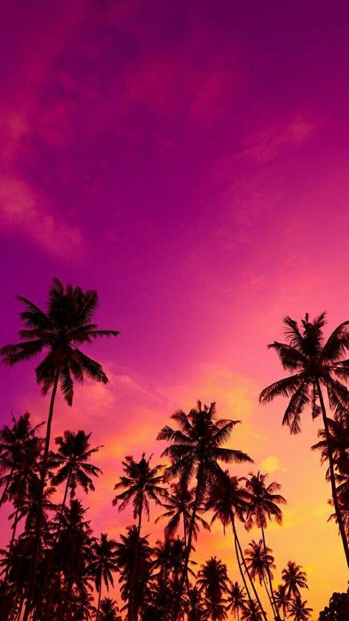 Most Inspiring Wallpaper Home Screen Sunset - 9c99f9e2f58a622d322ba11c21ecf3aa  Gallery_228511.jpg