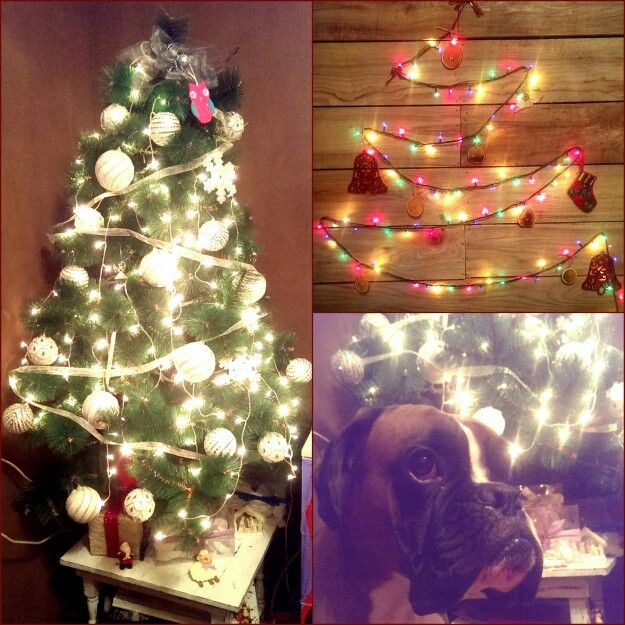 My Christmas home decor boxer dog rustic wood wall white