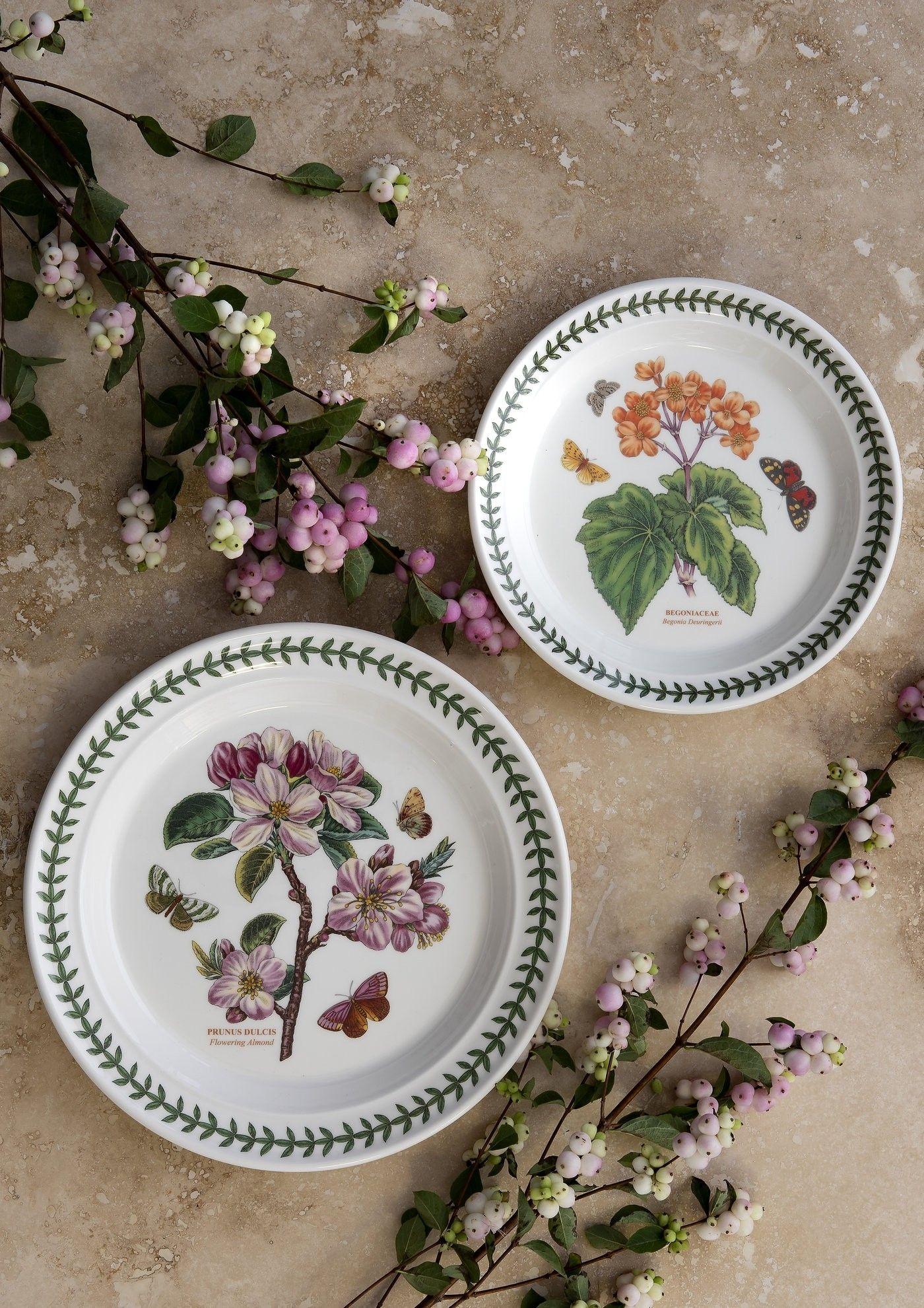 Botanic Garden Plate 10 Inch Dinner Plate Flowering Almond Set Of
