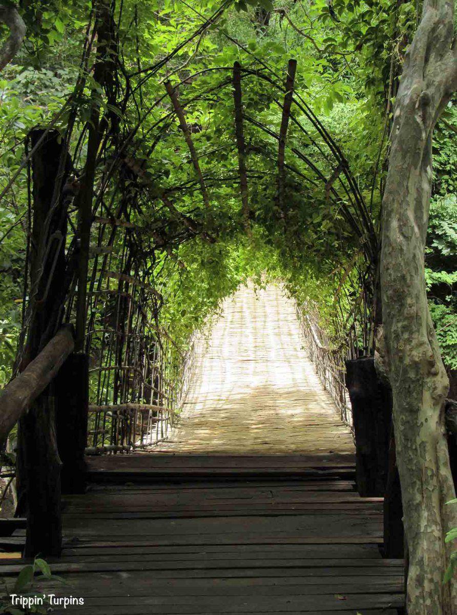 Off the Beaten Path in Laos: The Bolaven Plateau   Laos