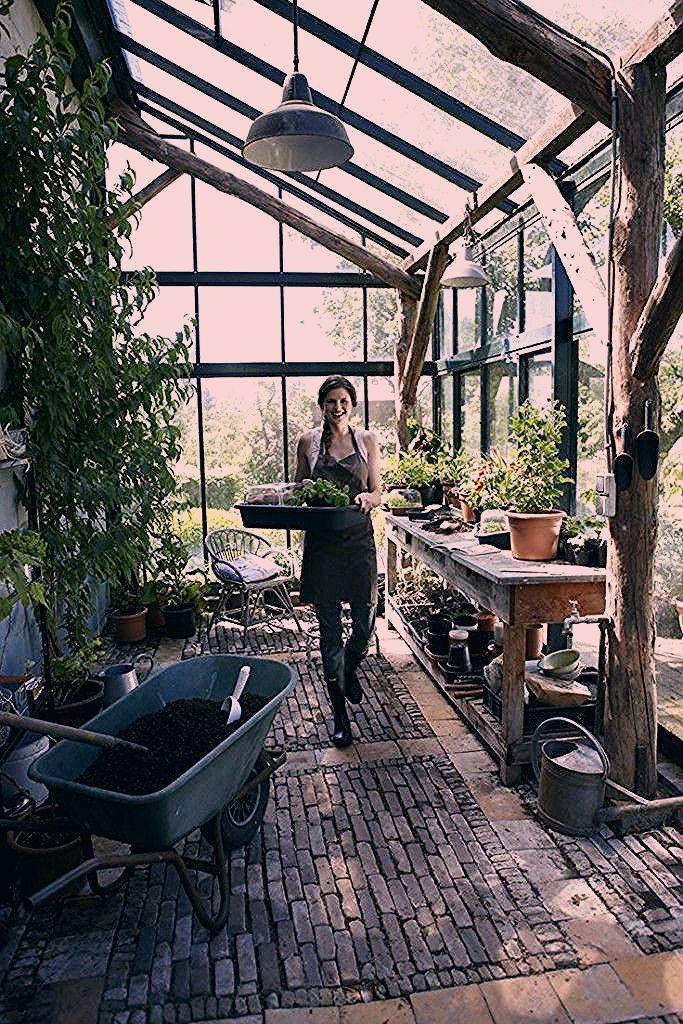 Photo of Gemüse Im Garten