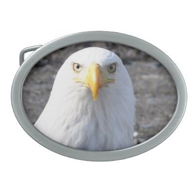 Bald Eagle Magical Memories Belt Buckle