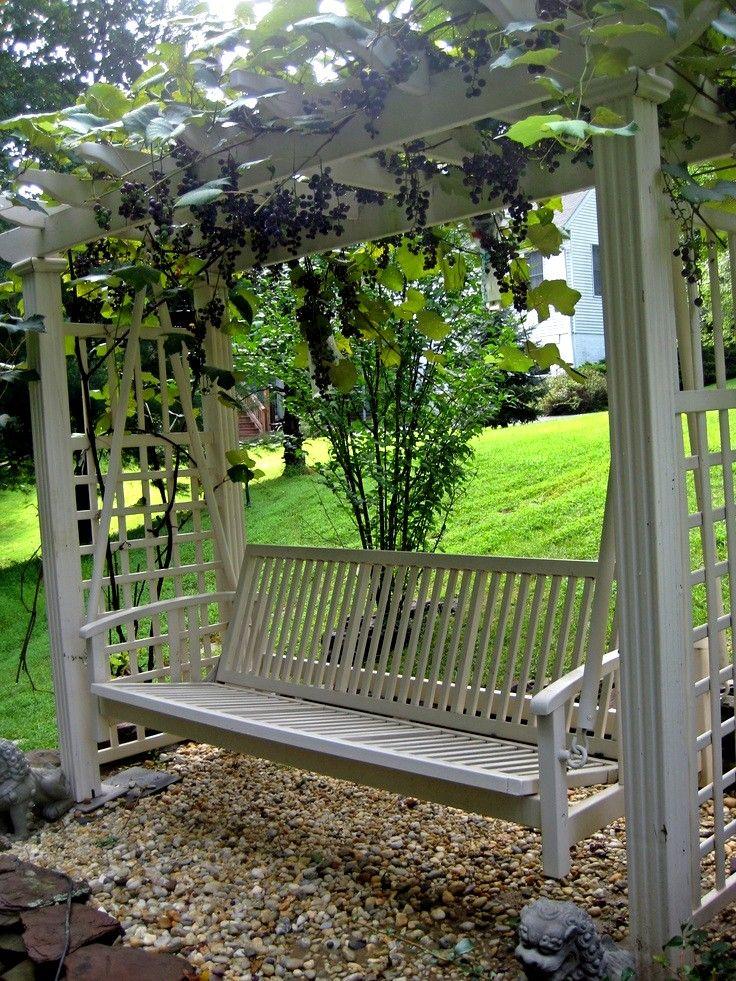 treille vignes et avec balancelle faire une pergola ou une treille avec vignes pinterest. Black Bedroom Furniture Sets. Home Design Ideas