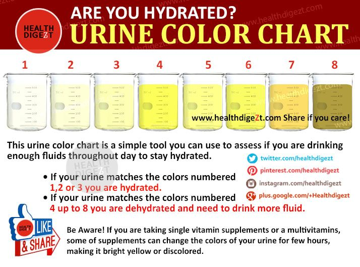 Are You Hydrated Urine Color Chart WwwHealthdigeztCom  Healthy