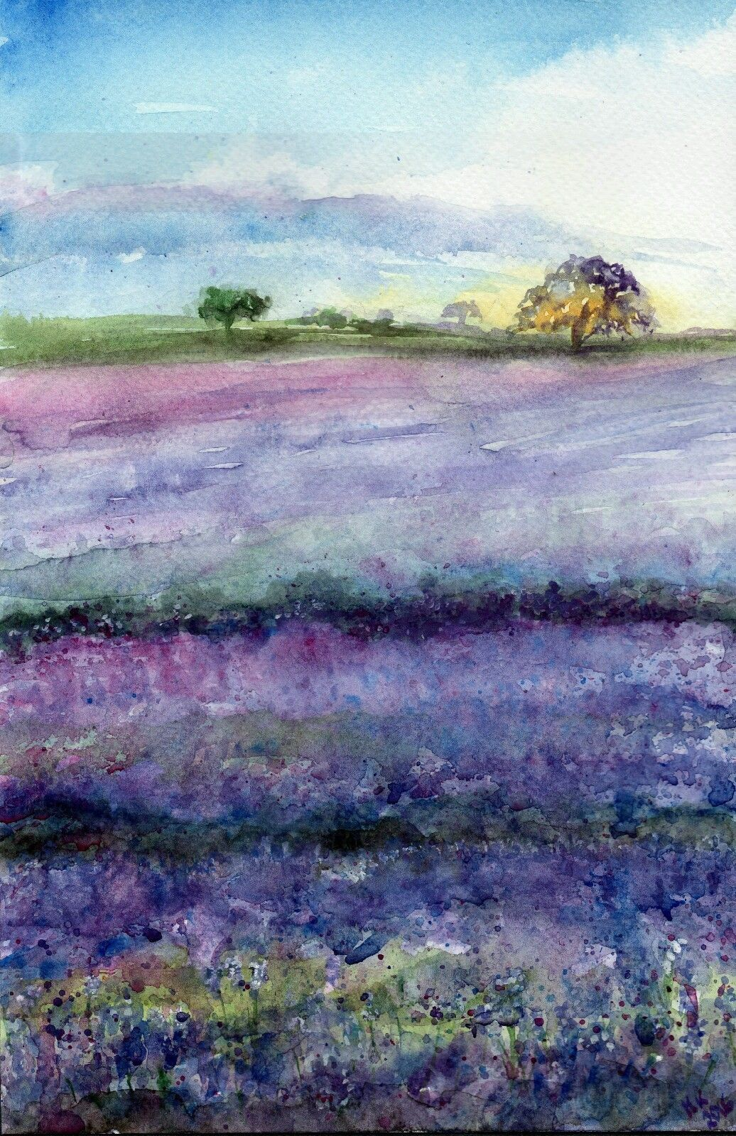 Original Aquarell Watercolor Landscape Landschaft Wiesen Toscana