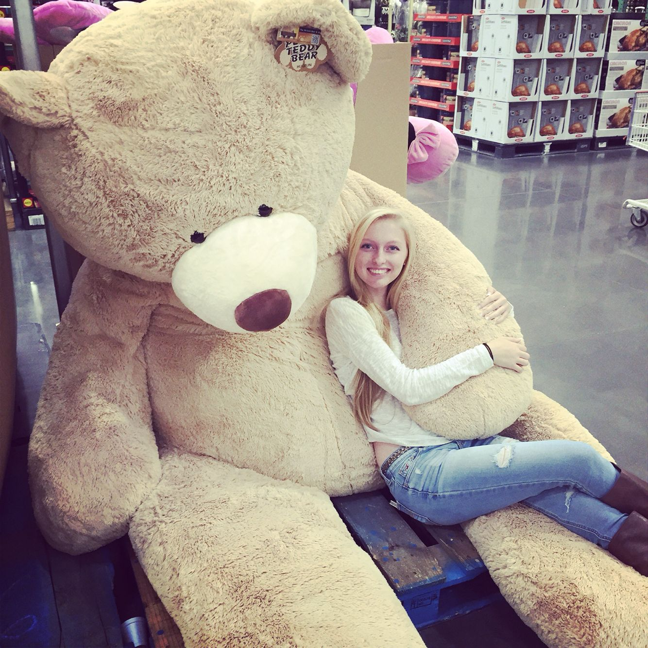 "93"" giant stuffed bear at Costco. Huge teddy bears"