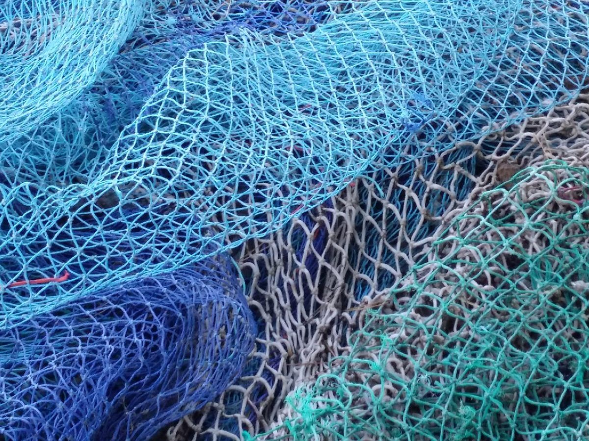 All at Sea: Foreign Fishing Fleets Drain West African Waters
