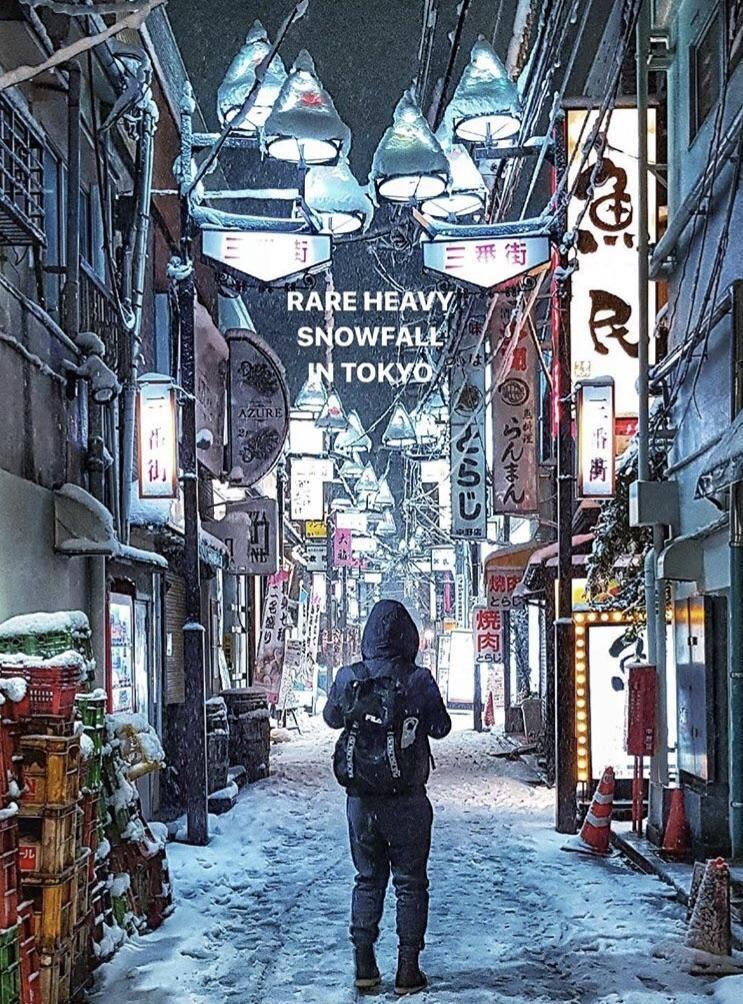 Tokyo Snow Day 東京, 景色, 風景